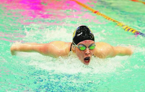 Kaitlyn Weatherby, butterfly and freestyle swimmer, swims using the butterfly technique during a meet. courtesy of Misericordia Athletics