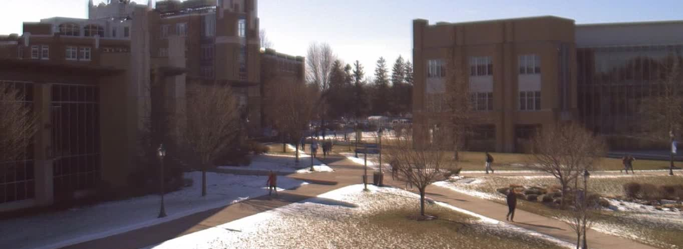 Community Feels Impacts of Staff Layoffs, Braces for Faculty Cuts