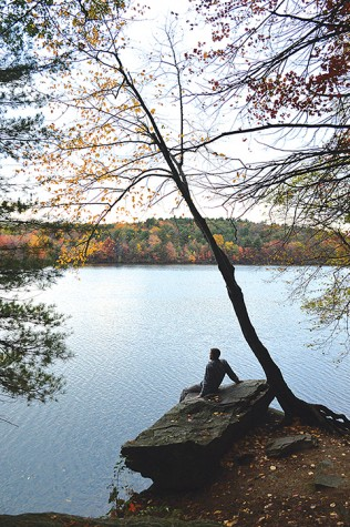 Tyler Bartron views the beautiful fall foliage while sitting on a rock overlooking the lake just off one of the trails.