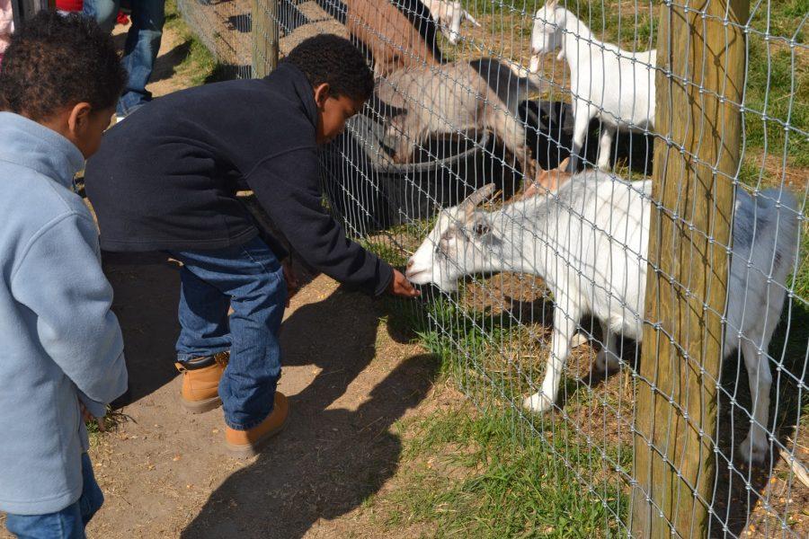 No Spare Change: A Trip to Roba's Family Farm