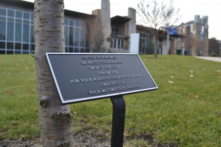 The plaque that is located at the foot of the cherry tree dedicated to Sr. Paulette Berrang, RSM.