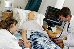 Two graduate nursing students monitoring the pulse of a medical simulation mannequin.